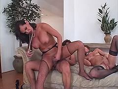 Hungry tranny in threesome on sofa